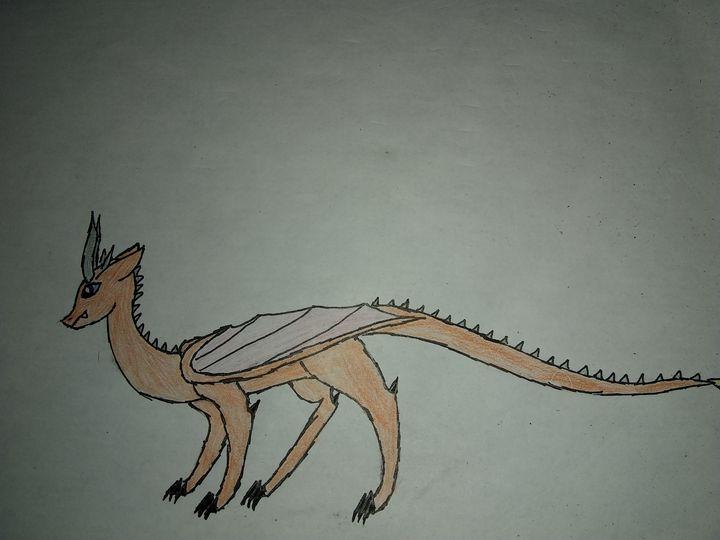 Curious Dragon - My studios