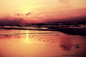 Dark Water Sunrise