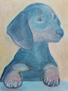 A Pastel Painting of a Dachshund