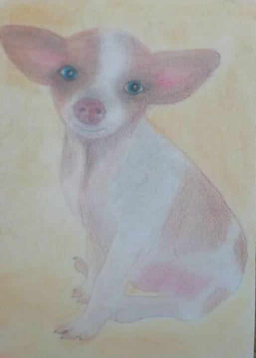 Chihuahua - Dawnsdesigns