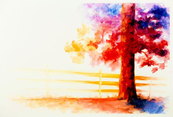 Ambience - Daniel Fisher