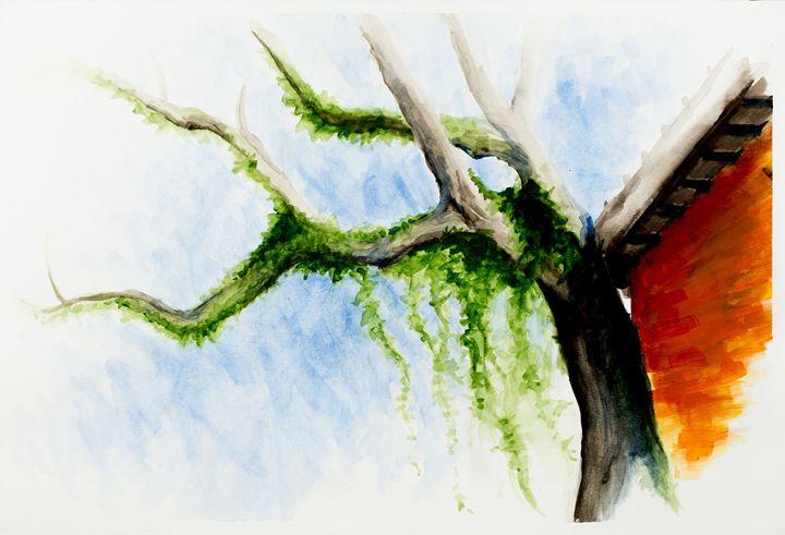 Rowan Oak - Daniel Fisher
