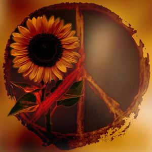 Peace & Sunflower