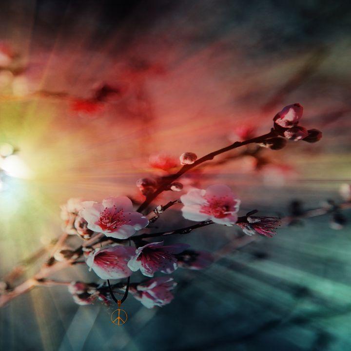 Blossom - LooseGoose Art