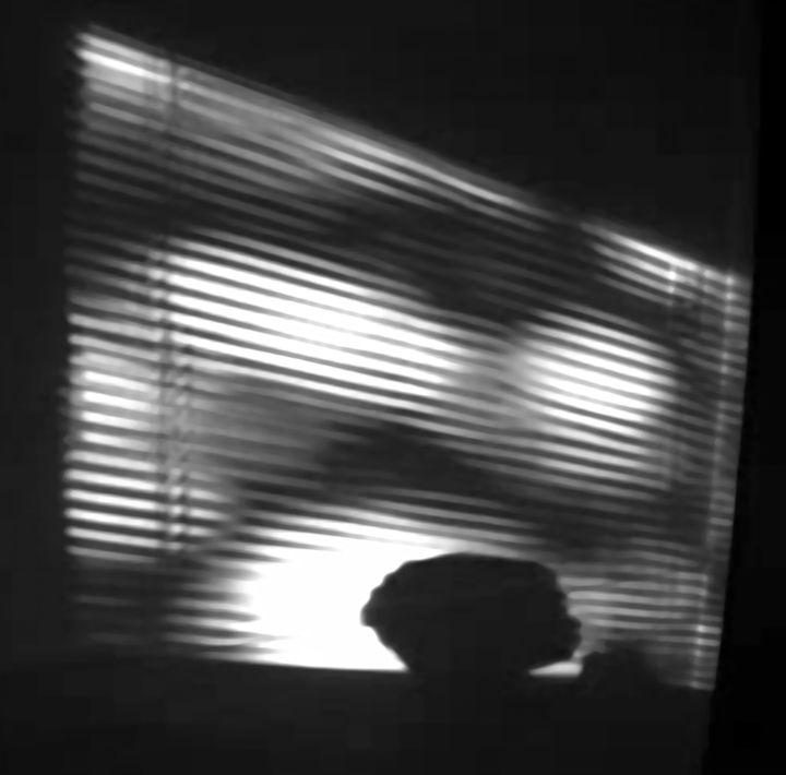 The Monster in the Window - LooseGoose Art
