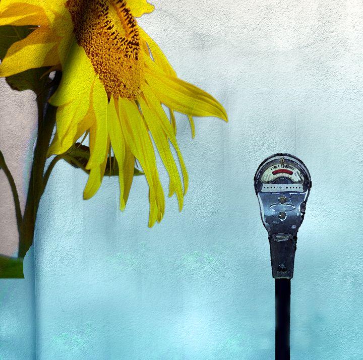 The Meter & The Flower - LooseGoose Art