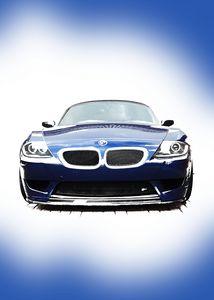 Blue BMW Z4 E85 Front Portrait