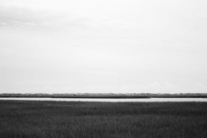 Stripes - Erin Lovejoy Photography