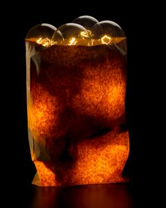 Bag of Bulbs - John Manno
