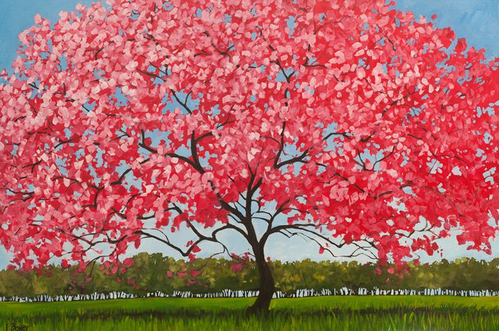 Pink Blossoms - Patty Baker