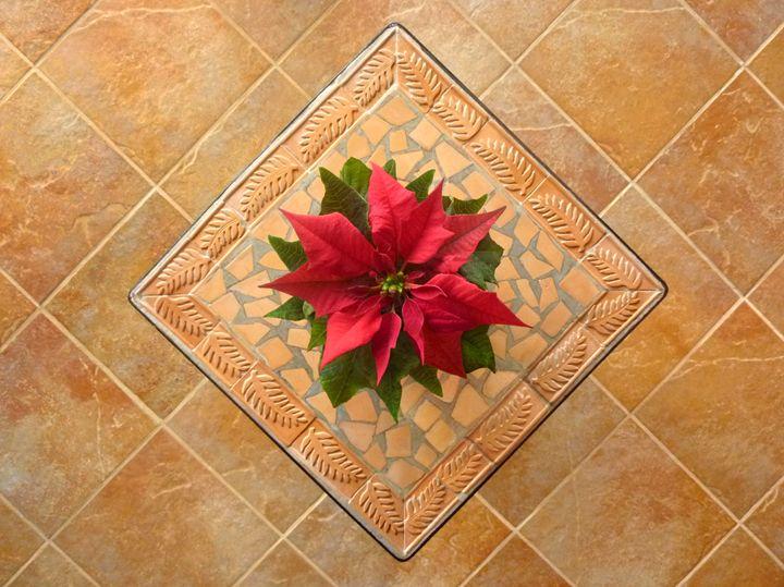 Framing Christmas - Lucyna A. M. Green