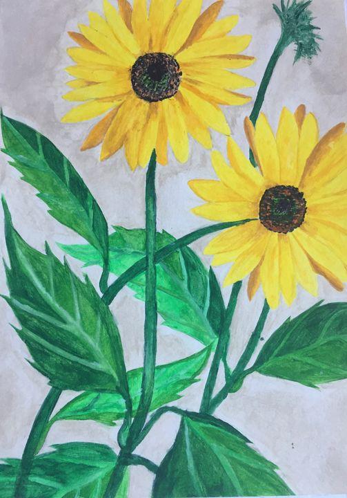 Sunflower - Julia lubinska