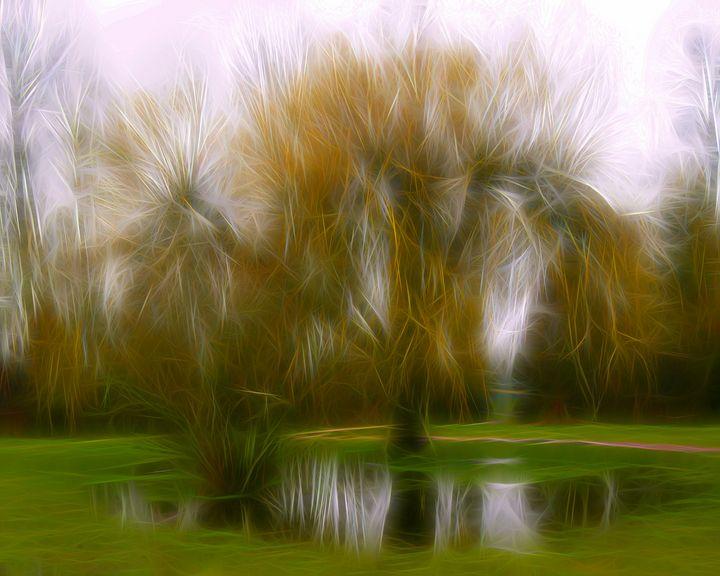 Weeping Willow - byteSMART Digital Visions
