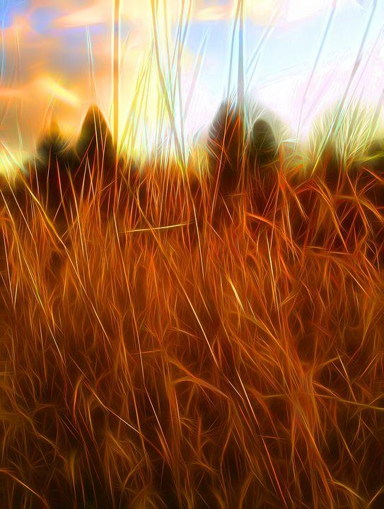 The Fire Season - byteSMART Digital Visions