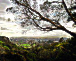 Autumn Wind over Victoria