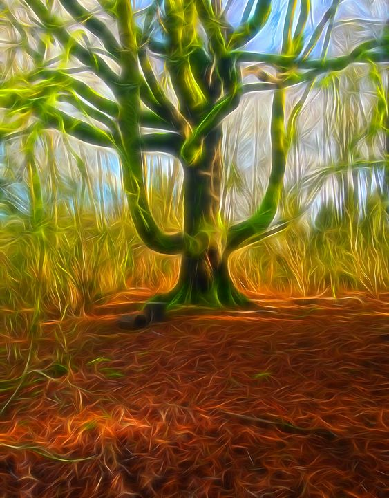 Green Man Oak - byteSMART Digital Visions