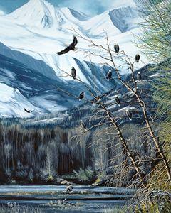 Chilcat River Alaska