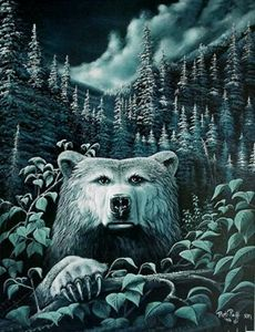 Moonlight Grizzly Bear