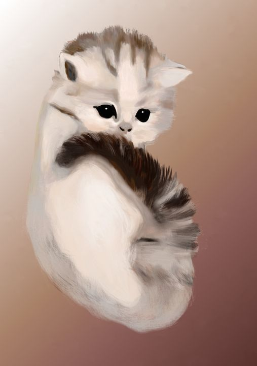 cute cat - better life