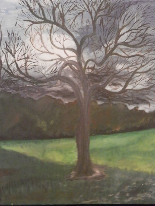 Oak tree, on a winter day - My view of nature