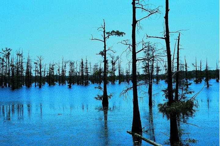 Blue Bayou - Soulexperience