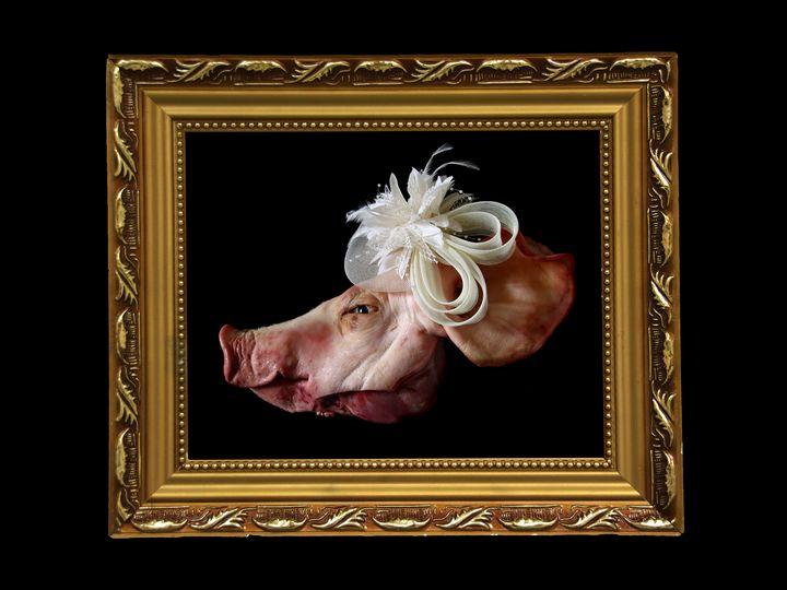 Raw Portrait 1 - Plumiere