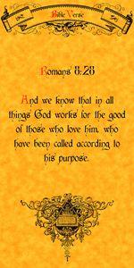 Bible Verse Romans 8:28