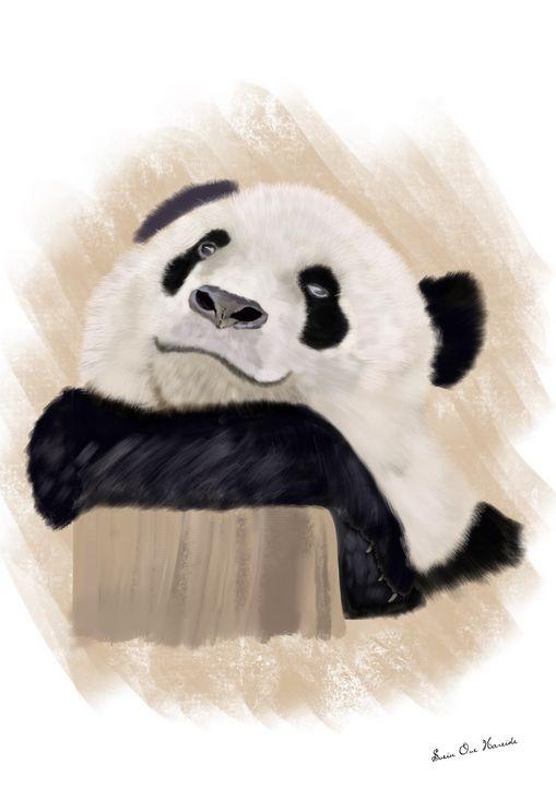 Panda 3 - HareideArt