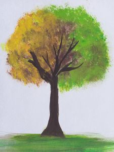 Colour tree painting