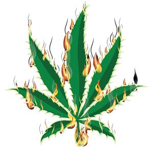 Flaming Marijuana Pot Leaf