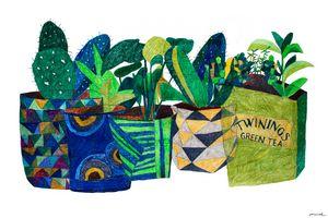 Scandinavian Pots & Plants