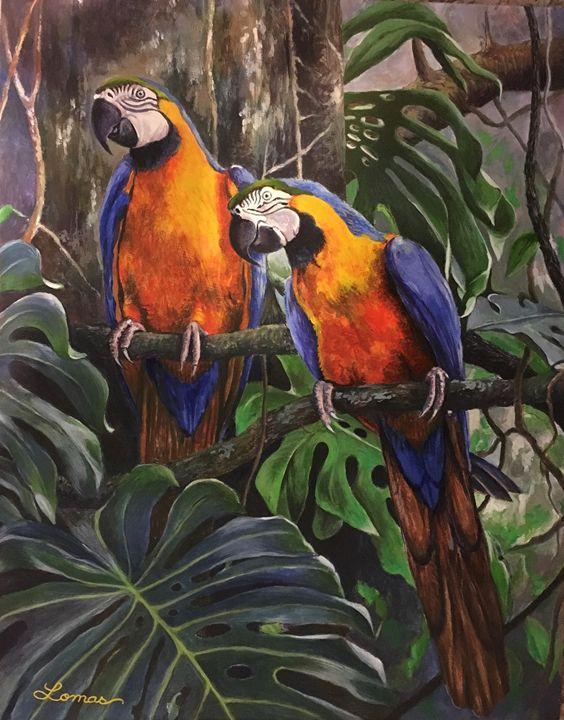 Macaws - Martina Lomas