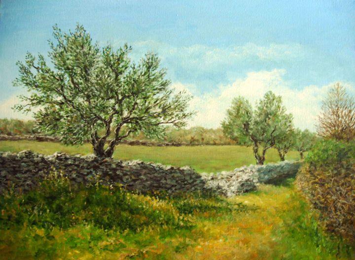 Olive trees - KristinaValicArt