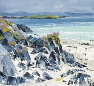 The Rocks of Iona North Beach