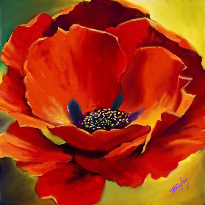 Poppy A Blast of Glory - T.Ralph Taylor