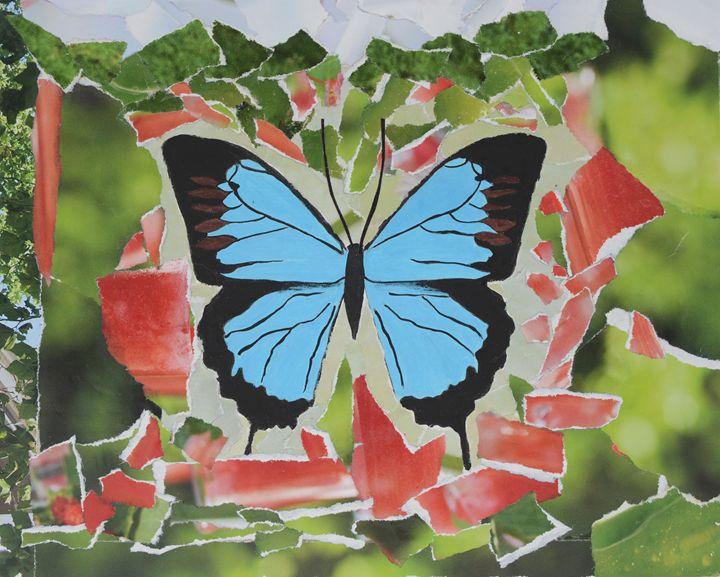 Papilio Ulysses - Artistologie