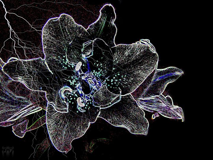 Gaze Upon A neon Star - JFantasma Artistry