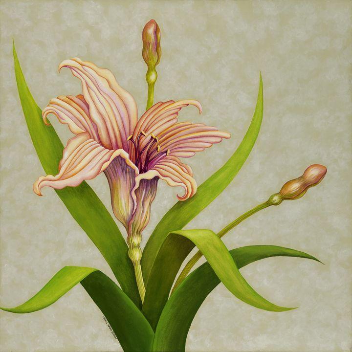 Peach Lily - Southwest & Florals by Carol