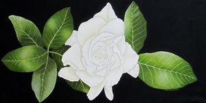 Gardenia Flower - Southwest & Florals by Carol