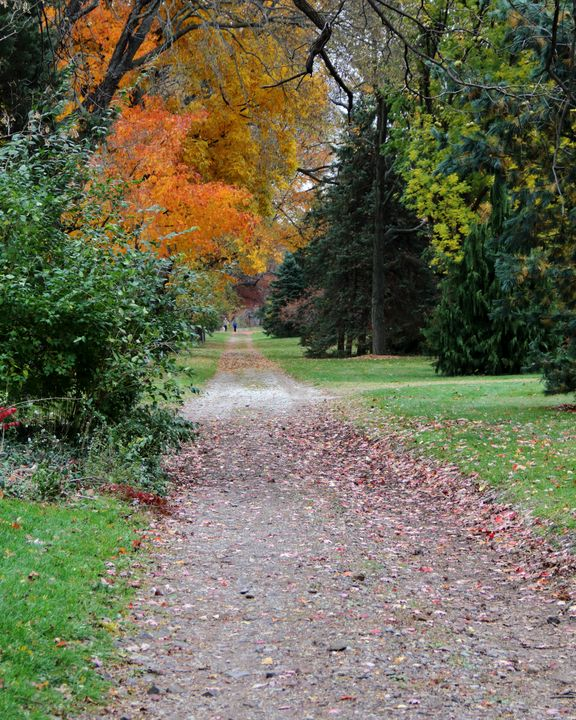 Fall Park Stroll - Adventure Images