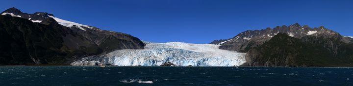 Aialik Glacier 2015 - Adventure Images