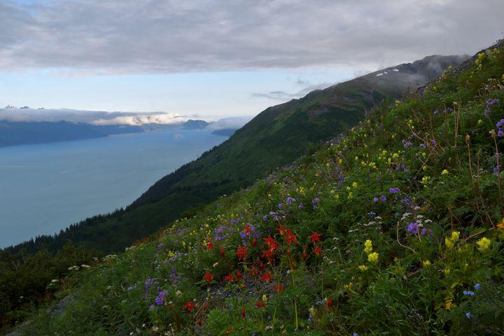Colors of Mount Marathon - Adventure Images