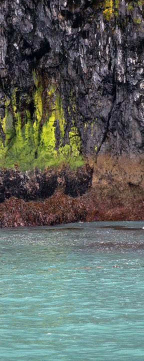 Sea Shore Colors - Adventure Images