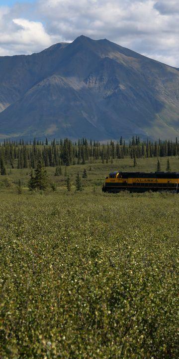 Denali National Park by Train - Adventure Images