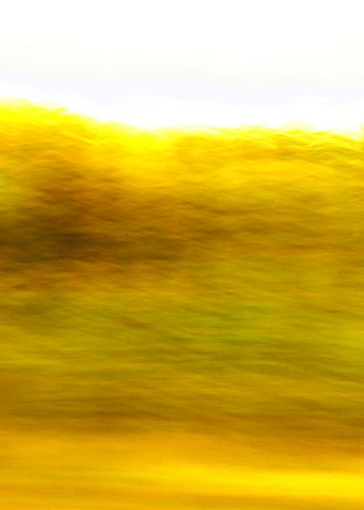 Roadside Abstract - Adventure Images