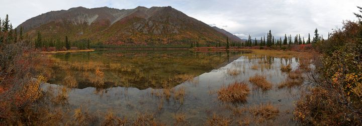 Shallow Reflections - Adventure Images
