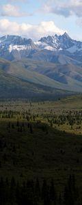 Slice of Denali National Park
