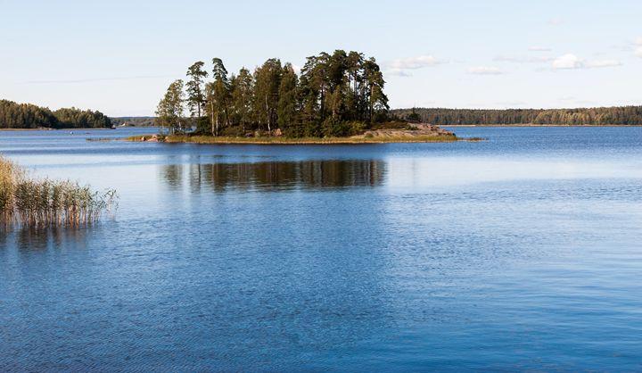 summer natural landscape. - rokkis