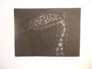 Cobra de medio lao