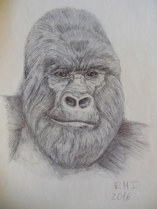 Gorila - Rubén Moreno Iniesto
